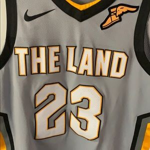 """THE LAND"". Lebron James #23 Cavs Gold wing Jersey"